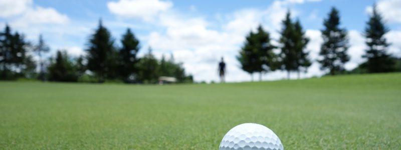 Golf Panorama 7